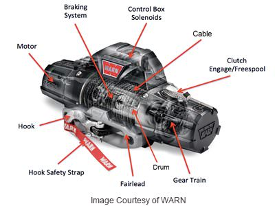 winch anatomy