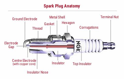 best spark plug anatomy